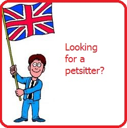 Petsitter Amsterdam