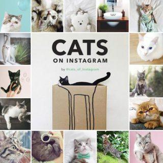 kattenboek