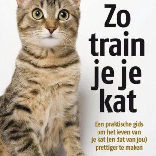boeken-katten
