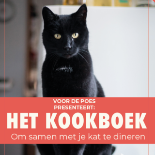 kat-cadeau-boek-kookboek