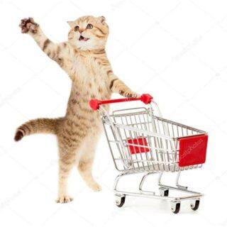 kattenspullen-kattenbak-kattenspeeltjes-kattenboeken