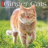 rode-katten-kalender