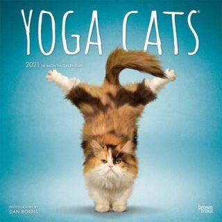 yoga-cats-kalender-2021
